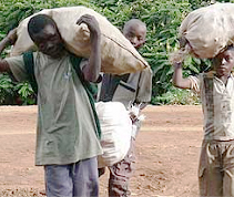 Otroška delovna sila na kakavovih plantažah